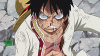 One-Piece-808-AnimeArchivos